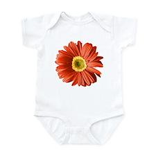 Pop Art Red Gerbera Daisy Infant Bodysuit