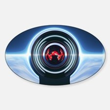 Spider Oval Decal