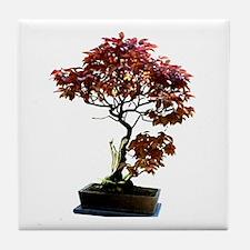 Red Leaf Bonsai Tile Coaster