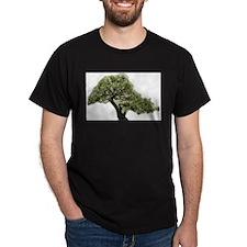 Bonsai Blossom T-Shirt