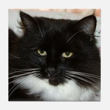 Black & White Cat Tile Coaster