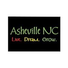 Asheville LDG Rectangle Magnet (10 pack)