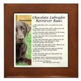 Chocolate labrador Framed Tiles