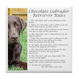 Chocolate labrador Drink Coasters
