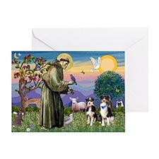 St Francis / Aussie pair (tri) Greeting Card