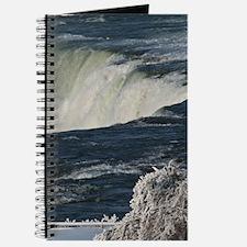 Niagara Falls From Goat Island Journal
