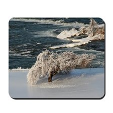 Ice Covered Winter Tree Mousepad