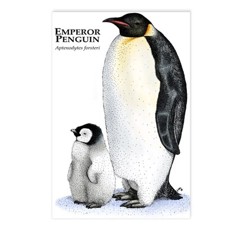 Emperor Penguin Postcards (Package of 8)