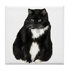 Helaine's Elvis the Cat Tile Coaster