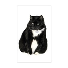 Helaine's Elvis the Cat Decal