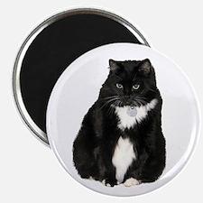 Helaine's Elvis the Cat Magnet