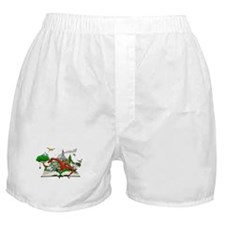 Reading is Fantastic! Boxer Shorts