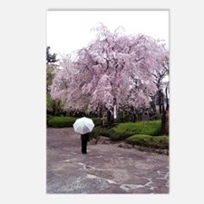 Cherry Blossoms-Umbrella Postcards (Package of 8)