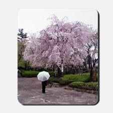 Cherry Blossoms-Umbrella Mousepad
