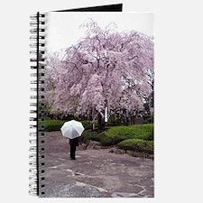 Cherry Blossoms-Umbrella Journal