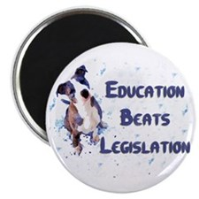"""UPDATE"" Education Beats Legislation 2.25"" Magnet"