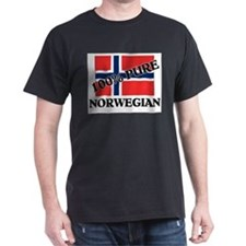 100 Percent NORWEGIAN T-Shirt