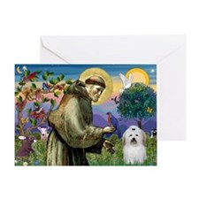St Francis/Coton de Tulear Greeting Card