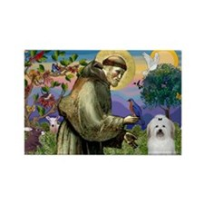 St Francis / Coton de Tulear Rectangle Magnet (10