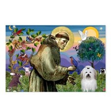 St Francis / Coton de Tulear Postcards (Package of