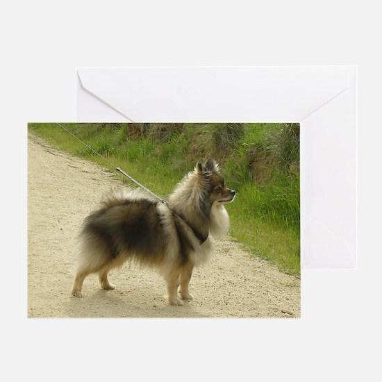 Wolf Sable Pomeranian Greeting Card