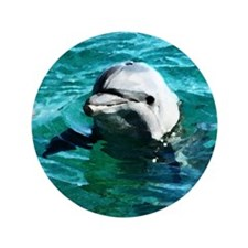 """DOLPHIN WATERCOLOR ART 3.5"""" Button (100 pack)"""