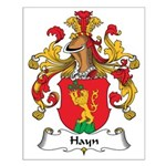 Hayn Family Crest Small Poster