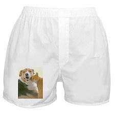 True Love Boxer Shorts
