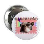 LOVE MY BOSTON TERRIER Button