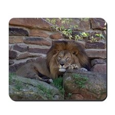 King of the Jungle Mousepad