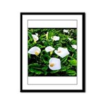 Field of Calla Lily Flowers Framed Panel Print