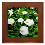 Field of Calla Lily Flowers Framed Tile
