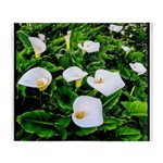 Field of Calla Lily Flowers Throw Blanket