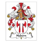 Habern Family Crest Small Poster