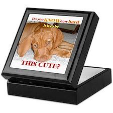 Cute vizsla puppy Keepsake Box