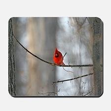 Ready For Flight Cardinal Mousepad