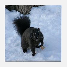 Black Squirrel In The Snow Tile Coaster