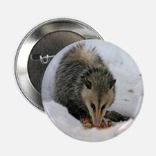 """A Possum In The Snow 2.25"""" Button"""