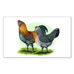 Easter Egg Chickens Rectangle Sticker 10 pk)