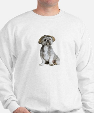 Shih Tzu Picture - Jumper