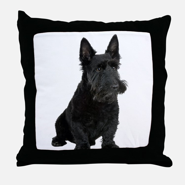 Scottish Terrier Picture - Throw Pillow