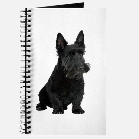 Scottish Terrier Picture - Journal