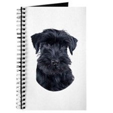 Schnauzer Picture - Journal