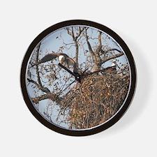American bald eagle Wall clock Wall Clock