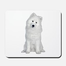 Samoyed Picture - Mousepad