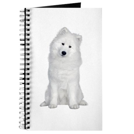 Samoyed Picture - Journal