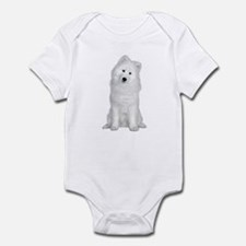 Samoyed Picture - Onesie