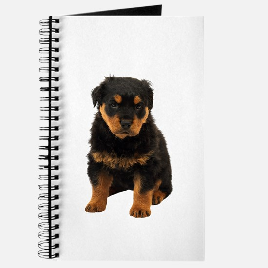Rottweiler Picture - Journal