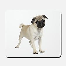 Pug Picture - Mousepad