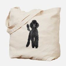 Poodle Picture - Tote Bag